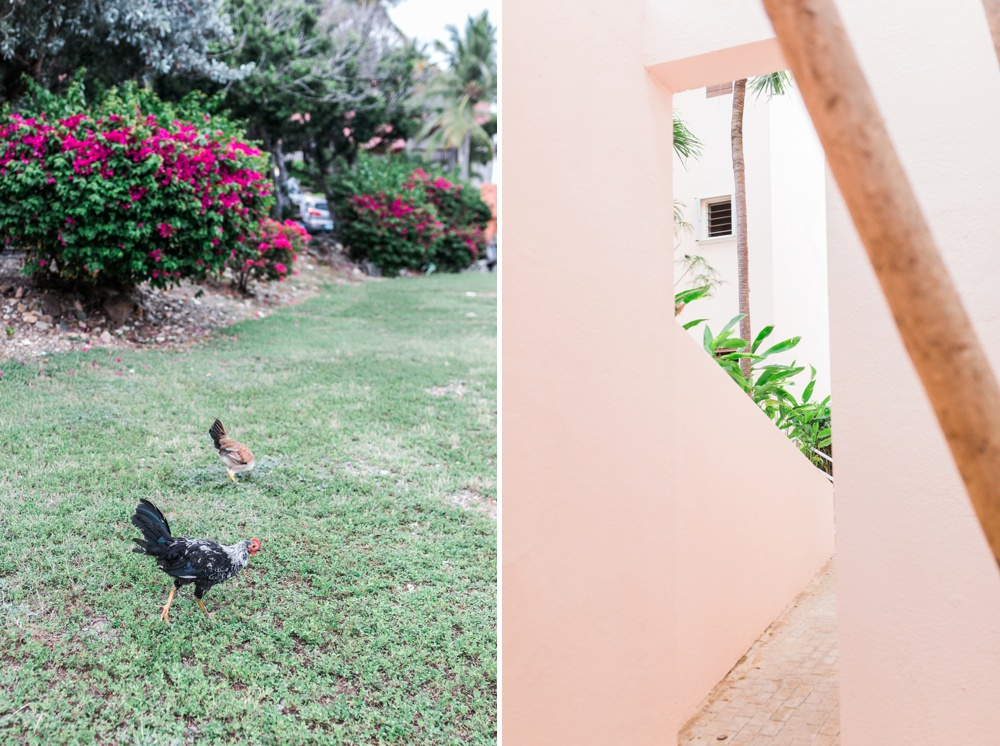 caribbean-photographer-15