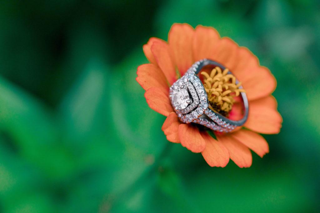 engagement ring on flower at meadowlark botanical gardens
